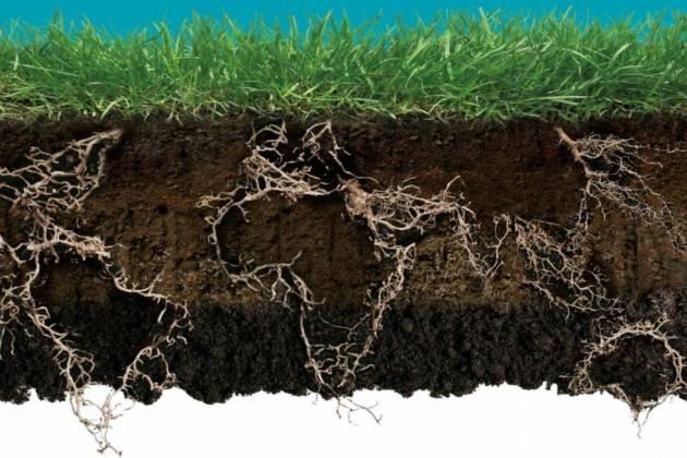 Обкладинка атласу ґрунтів